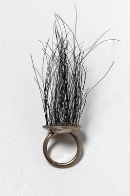 Ring; 2005.2.1